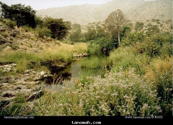 وادي المطعن في قرية الصبيات شمال تنومة مناظر 1422