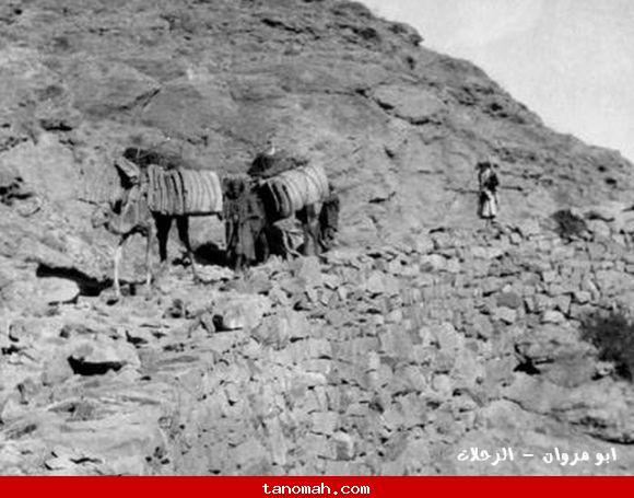 الحجاج - الطريق الى مكة