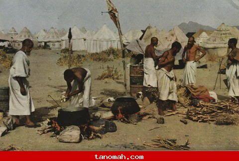 الحج -حجاج يطبخون الغداء بأنفسهم في يوم عرفه، أكل نظيف، حركه وصحه ونشاط والكل سواسيه