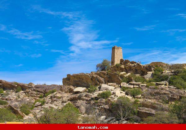 احدى القلاع التنومية القديمة (قرية آل الصعدي)