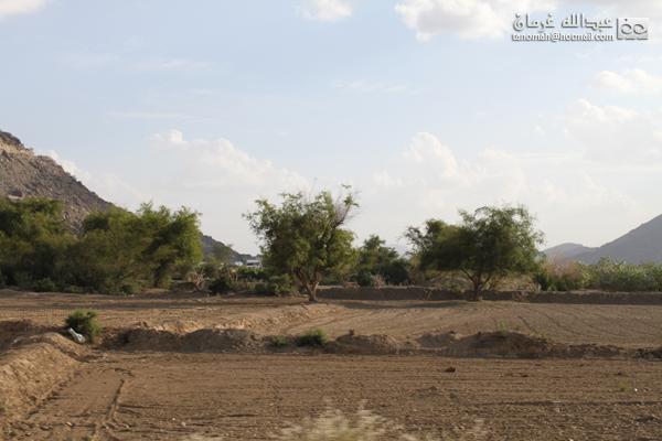 منظر من ثلوث المنظر بتهامة بني شهر