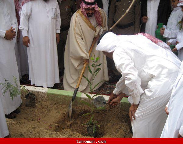 افتتاح فعاليات أسبوع الشجرة بتنومة1431