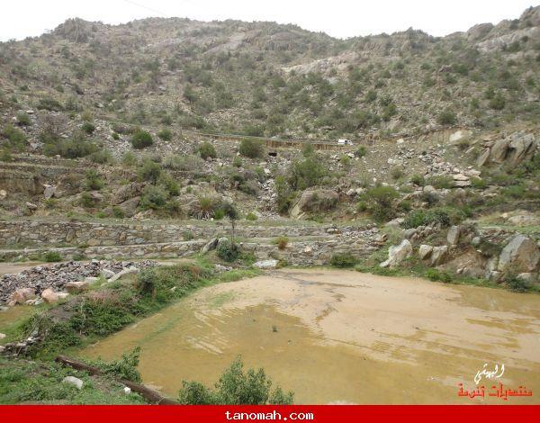 صور من وادي الغر - تصوير البهيشي 5