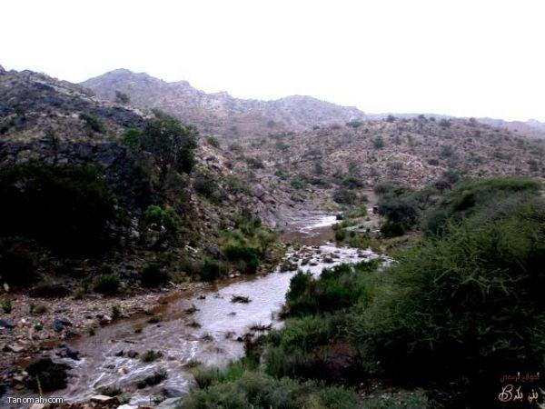 امطار وسيول قرية ترج وال خضاري يوم الاربعاء 26/6/1431هـ  (عدسة العمدة)