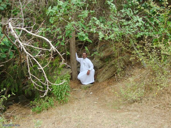 أسرار وخفايا وادي دهناء
