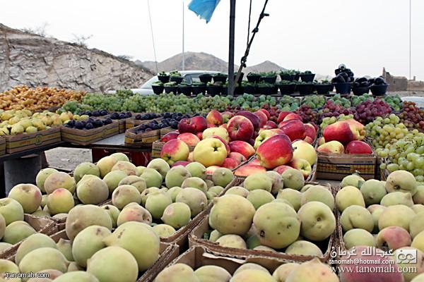 صورة التقطتها كامرا الموقع لبعض المتجات الزراعية التي تباع على طريق ابها الطائف