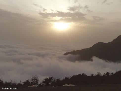 تصوير توفيق الأسمري - التقط هذه الصورة للضباب معانقا أعالي جبال بللسمر