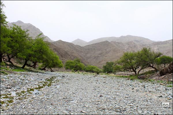 مناظر من  وادي عيا