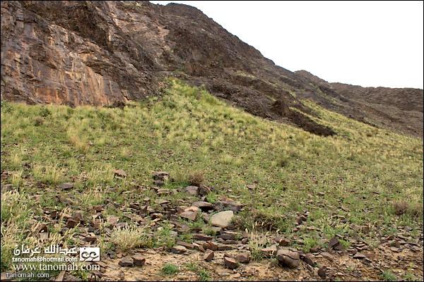 سفح احد الجبال المخضر في  وادي عيا