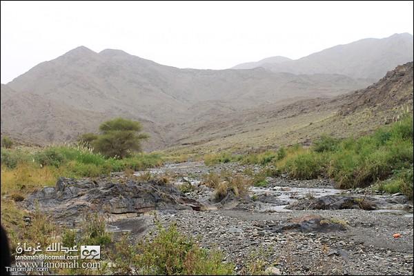 وادي عيا