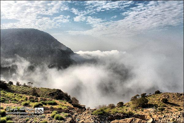 الضباب يعانق جبال تهامة في منظر من شفا بللحمر