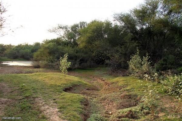 مناظر من خبت الحجري - محافظة المجاردة (تصوير - عبدالله بن جاري)