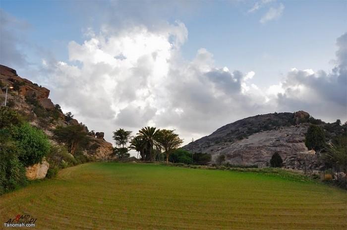 مناظر وصور الامطار لتنومه لعام 1432هـ  (عدسة سعد الشهري)