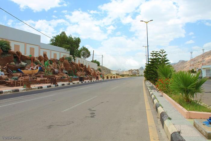 صور لشارع المليون بتنومة (عدسة عبدالله غرمان)
