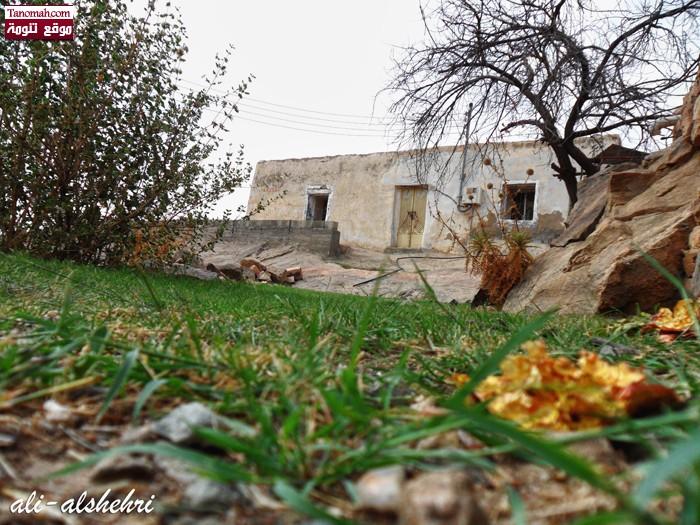 صوره  لقرية ال سياره - منعاء التقطت في تاريخ 27/ 10/ 1432 (عدسة علي الصقر)
