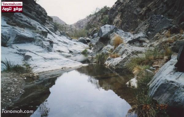 المياه الجارية في (( عيام تيس )) تنومة  - عدسة محمد الأبط