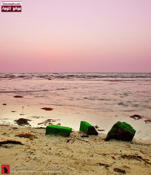 شاطئ البحر في البرك - خالد يوسف