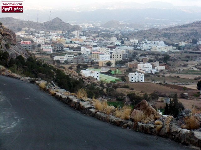 صورة من طريق منعا لتنومة (عدسة أسد)