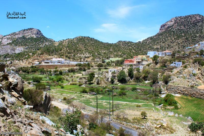 """وادي """"الغر"""" الذي يتميز بخضرته الدائمة  ... عدسة عبدالله بن غرمان"""