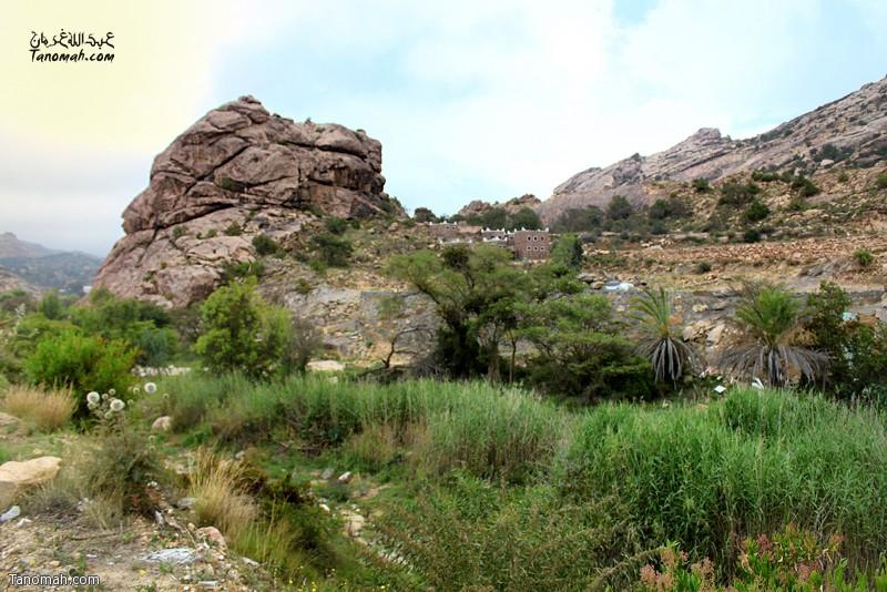 منظر من وادي بني لام ... عدسة عبدالله بن غرمان