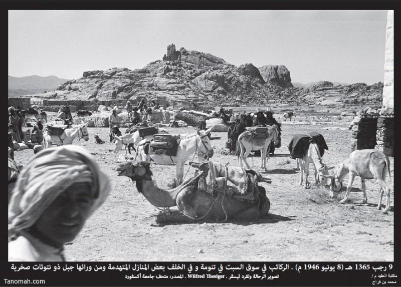 ركائب المتسوقين في سوق السبت بتنومة التقطت الصورة بعدسة الرحالة ولفرد ثيسقر في 9 رجب 1365هـ