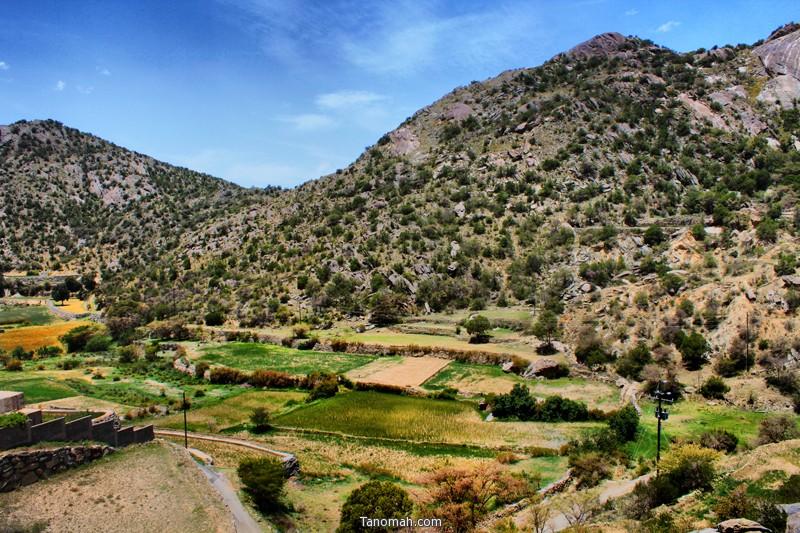 وادي الغر شمال تنومة - عدسة عبدالله غرمان