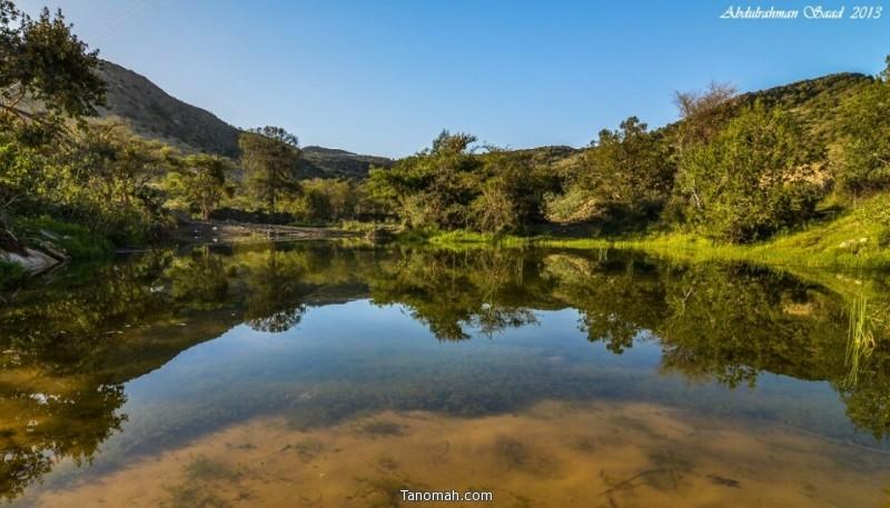 الماء والخضرة - عدسة عبدالرحمن سعد