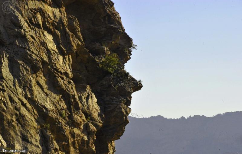 تشكيل صخري على شكل وجه إنسان في تنومة