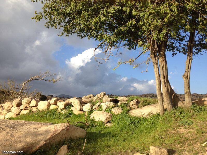 منظر من قرية أل سودة - عدسة عبدالله مرعي