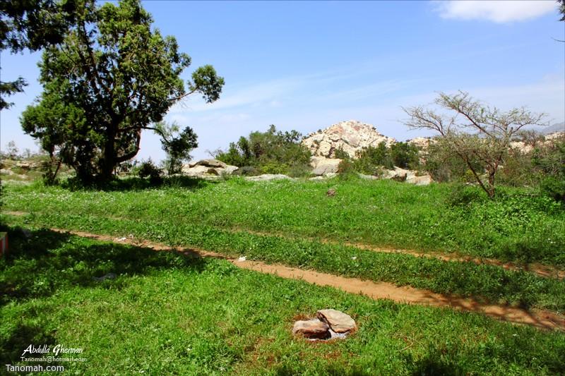 منتزه الحيفة بمحافظة تنومة المطل على تهامة