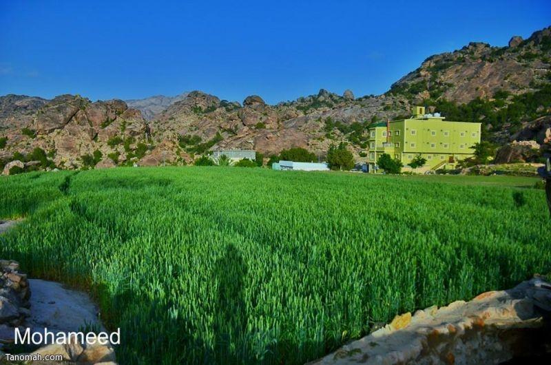 صور من قرية ال سيارة بجبل منعاء محافظة تنومة