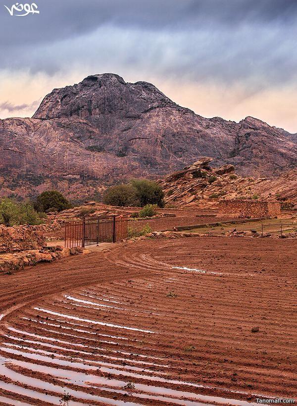 الاستعداد لبدء الزراعة في قرية آل عضاه بتنومة عدسة :عوض