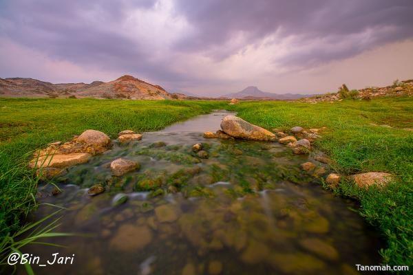 وادي الغينا في بارق