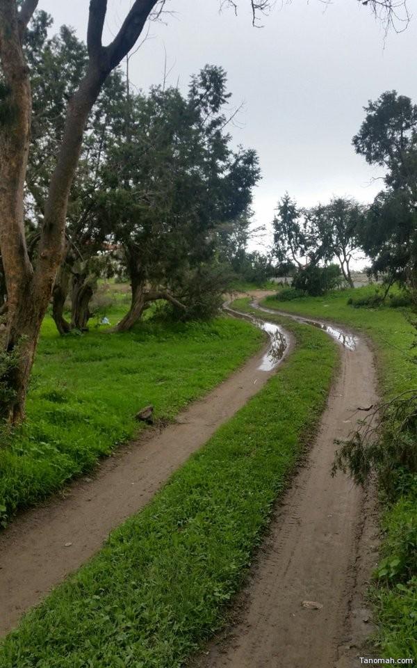 #صورة لـ #الطبيعة الجميلة في #منتزه الحيفة #عدسة: عبدالله الشهري