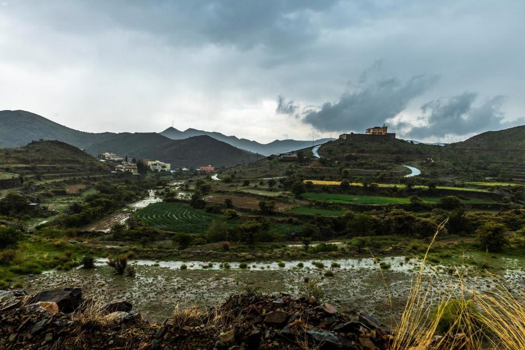في عسير ... جمال الأرض بعد المطر