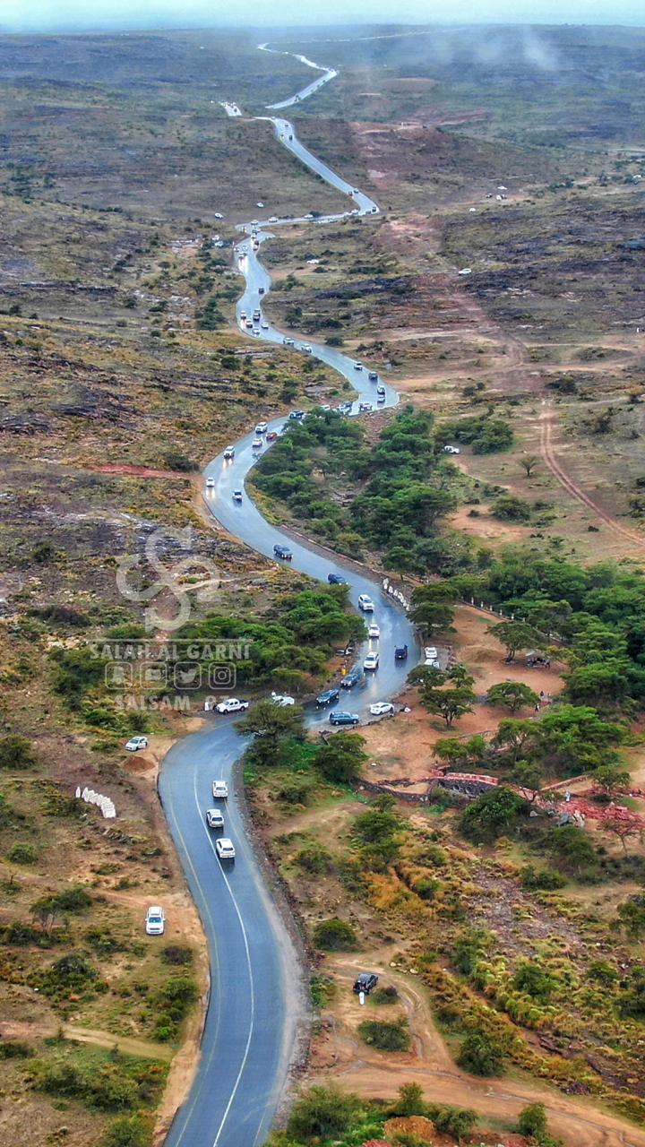 الحبلة بعد المطر / تصوير صلاح القرني