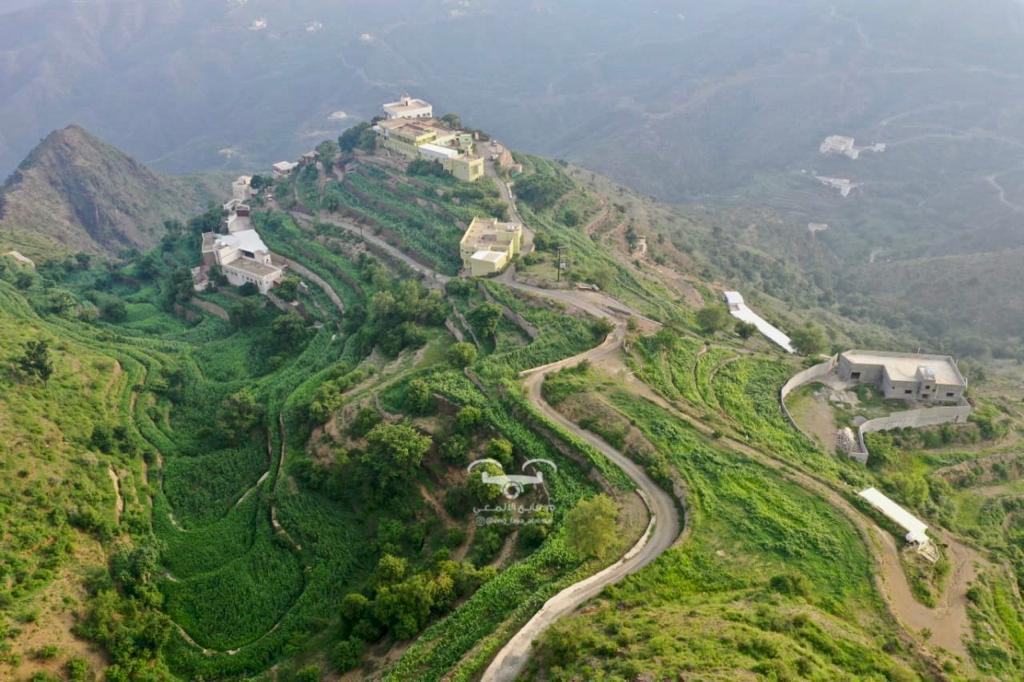 الزراعة في جبل قيس