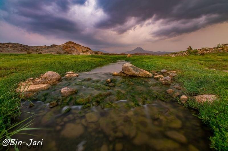 وادي البرداني في #بارق ..تصوير: عبدالله جاري