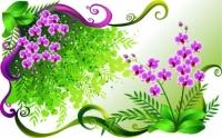 زهور الخيال