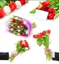 مجموعة من صور الورد الاحمر