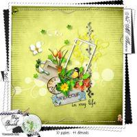 اسكراب - مجموعة متنوعة وجميلة من قطع السكراب للتصميم