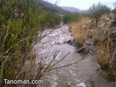 الأمطار الغزيرة تواصل هطولها على تنومة والنماص وبللسمر وتهامة