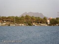 ميناء القحمة.. أهمية تاريخية تبحث عن مستثمر «شجاع»
