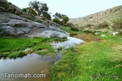 جمال الطبيعة في وادي شعبان