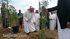 برعاية محافظ تنومة الزراعة تفعل اسبوع الشجرة