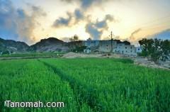 جمال الطبيعة الساحرة في قرية آل سيارة بمنعاء