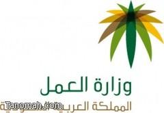 وزارة العمل تطلق خدمة الاستقدام الالكتروني
