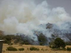 بالصور :حريق هائل في منتزه عثربين شمال تنومة