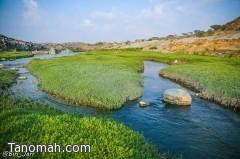 الطحاحين .. جمال الطبيعة والمياه الجارية