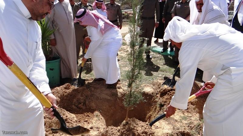 محافظ تنومة يدشن فعاليات أسبوع الشجرة بالمحافظة